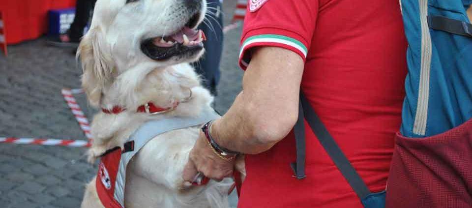"""Croce Rossa di Roma """"arriva il docu-film su animali e uomini"""""""